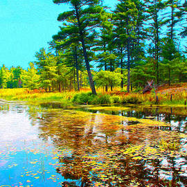 Nina Silver - August Pond Water Painting