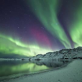 Arnar B Gudjonsson - Aurora Borealis in Iceland
