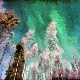 Akos Horvath - Aurora landscape with northen lights.  Home Decor Wall Art Digital Painting Print  by Akos Horvath