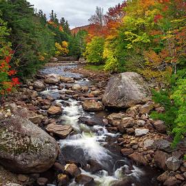Mark Papke - Ausable Autumn