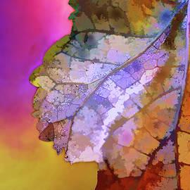 Terry Davis - Autumn 1