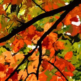 Jean Hall - Autumn Ablaze