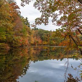 Brian MacLean - Autumn at Hillside Pond