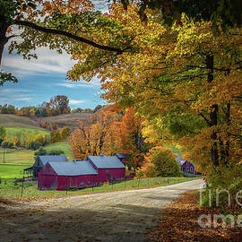 Scott Thorp - Autumn at the Farm