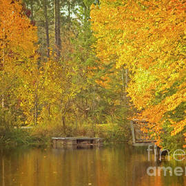 Hal Halli - Autumn at the Pond