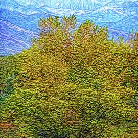 Joel Bruce Wallach - Autumn Becomes Winter