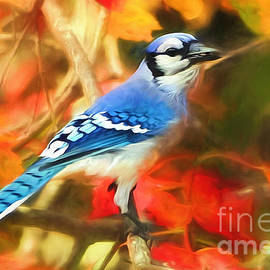 Tina LeCour -  Autumn Blue Jay