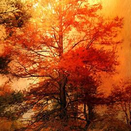 Theresa Campbell - Autumn Cedar