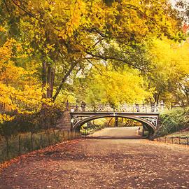 Vivienne Gucwa - Autumn - Central Park Bridge - New York City