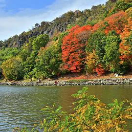 Regina Geoghan - Autumn Cliffs of NJ Palisades