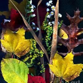Anne Sands - NH Autumn Collage