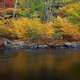 Juergen Roth - Autumn Color