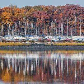 Morris Finkelstein - Autumn Colors At Tods Point