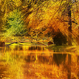 Autumn colors - Ivan Vukelic
