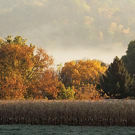 Inspired Arts - Autumn Cornfield