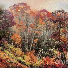 Dan Carmichael - Autumn Fall Colors 17 AP