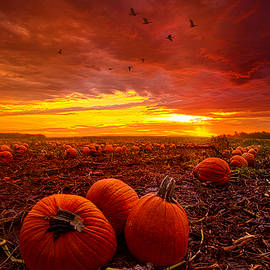 Autumn Falls - Phil Koch