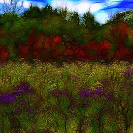 Jean-Marc Lacombe - Autumn Field