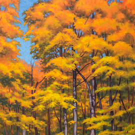 Fiona Craig - Autumn Forest 1