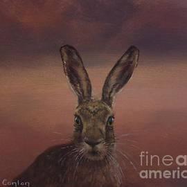 Sean Conlon - Autumn Hare