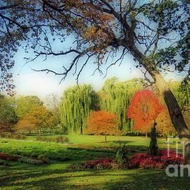 Kay Novy - Autumn In A Beautiful Park