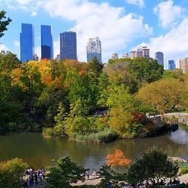 Allen Beatty - Autumn in Central Park 5