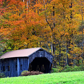 Mike Martin - Autumn in New England