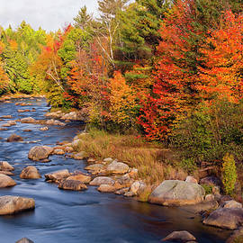 Betty Denise - Autumn in New Hampshire