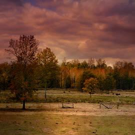 Jai Johnson - Autumn In The Country