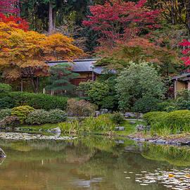 Calazones Flics - Autumn In The Garden- 2