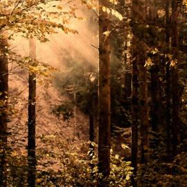 Georgiana Romanovna - Autumn In The Morning Light