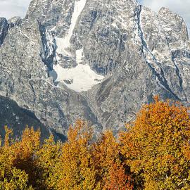 Wildlife Fine Art - Autumn in the Mountains
