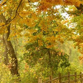 Pamela Patch - Autumn in the Park