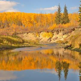 Jim Sauchyn - Autumn in Whitemud Ravine