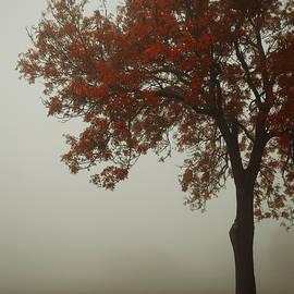 Autumn - Joanna Jankowska