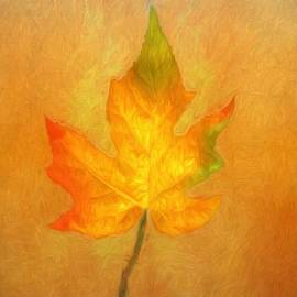 Kathleen Rinker - Autumn