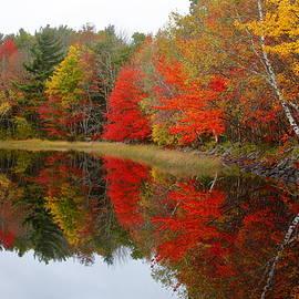 Gary Corbett - Autumn Lake, Nova Scotia