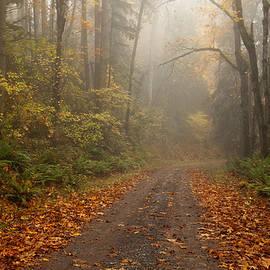 Mike  Dawson - Autumn Lane