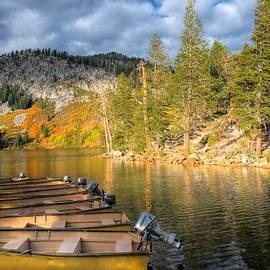 Lynn Bauer - Autumn Light at the Lake