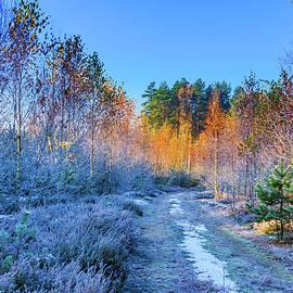 Dmytro Korol - Autumn meets winter