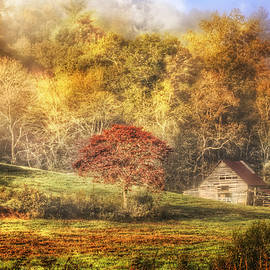 Debra and Dave Vanderlaan - Autumn Mists