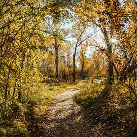 Vishwanath Bhat - Autumn morning along Green Belt in Boise Idaho
