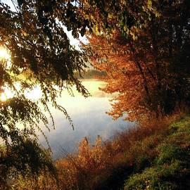 Kathy Bassett - Autumn Morning