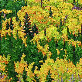 Rob MacArthur - Autumn mosaic