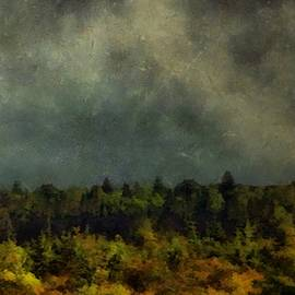 RC deWinter - Autumn Night in the Pines