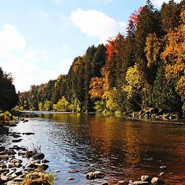 Debbie Oppermann - Autumn On The Grand River