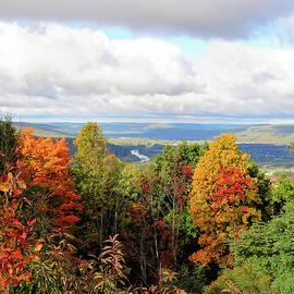 Trina Ansel - Autumn Overlook