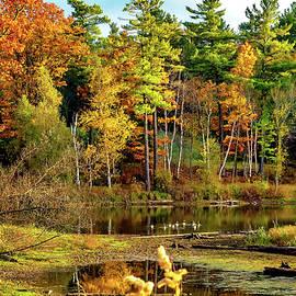 Steve Harrington - Autumn Pond 5