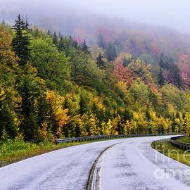 Thomas R Fletcher - Autumn Rain Highland Scenic Highway