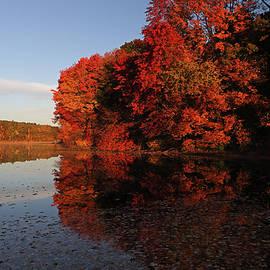 Juergen Roth - Autumn Reflection